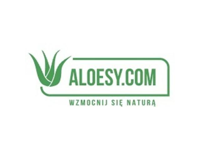 Usługa protetyki u dentysty w Warszawie
